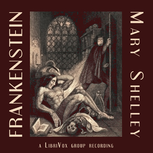 Frankenstein- or The Modern Prometheus(381) by Mary Wollstonecraft Shelley audiobook cover art image on Bookamo